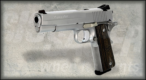 1911 stainless sig 500